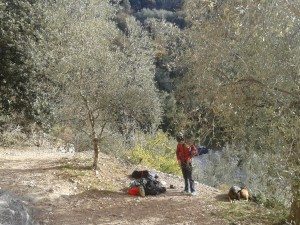 Jeremy getting ready among the olives