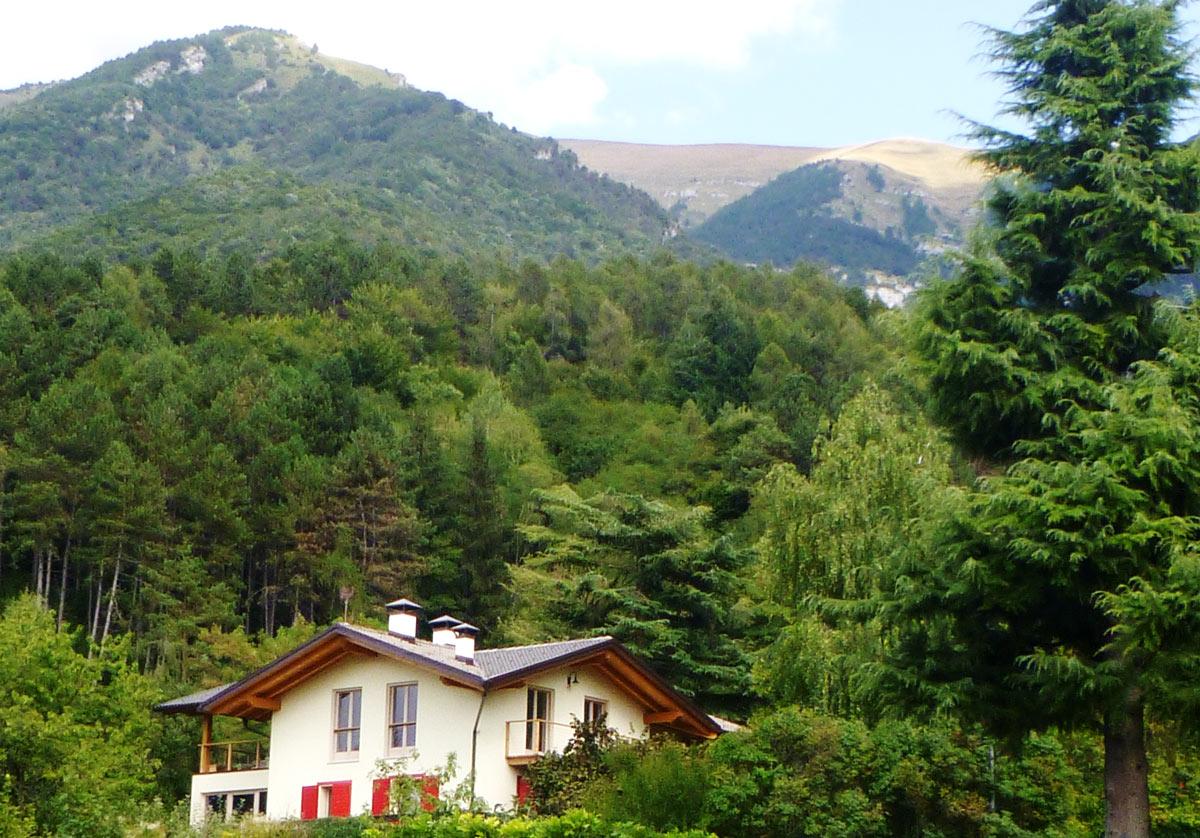 The Truffula Tree Wood House